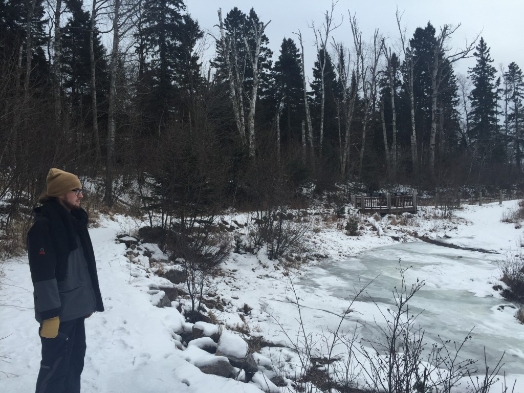 Cordie Hiking MN