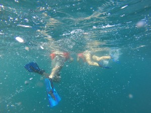 Go Pro Under Water