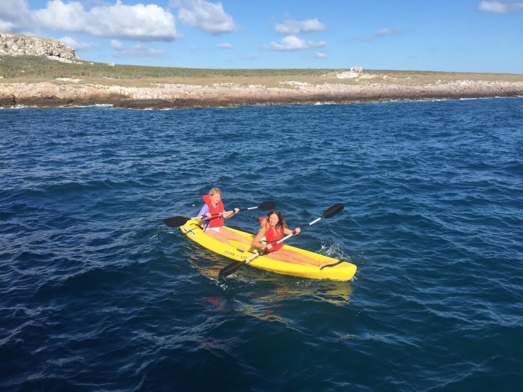 vallarta adventures - kayaking